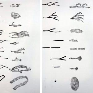 Tipos característicos originales de las huellas dactilares y traducción de esos tipos característicos de las huellas dactilares a través de mi dibujo.
